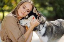 Nguyên nhân và 5 cách FAO chiến đấu cho sức khỏe động vật